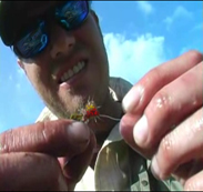 Guided fly fishing trips, UK